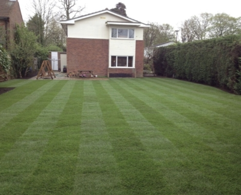 lawn windsor laid